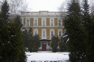 институт_белинского